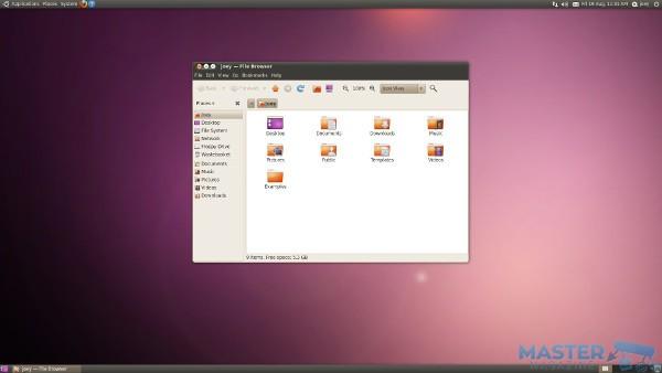Una vieja versión Ubuntu 10.04, del año 2010