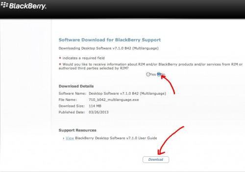 actualizar_blackBerry_curve_bold_torch_8