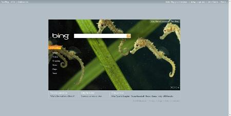 """Bing, la """"rabieta"""" de Microsoft para destronar a Google"""